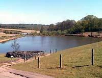 Eric's Lake Shatterford