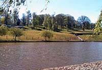 Stuarts Lake, Shatterford