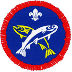 scout badge.jpg