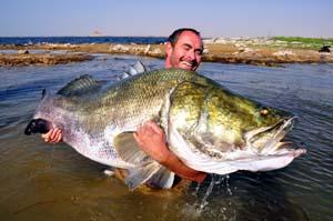 Lake Nasser Nile Perch