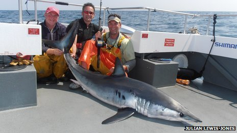 Mako Shark caught.jpg