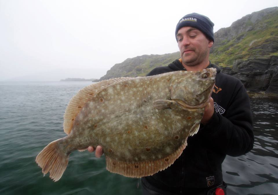 World plaice record Norway 2013.jpg
