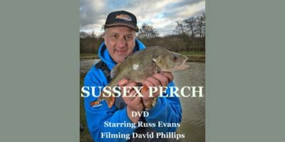 Obsessed Angler Sussex Perch.jpg