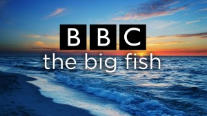 BBC The Big Fish.jpg