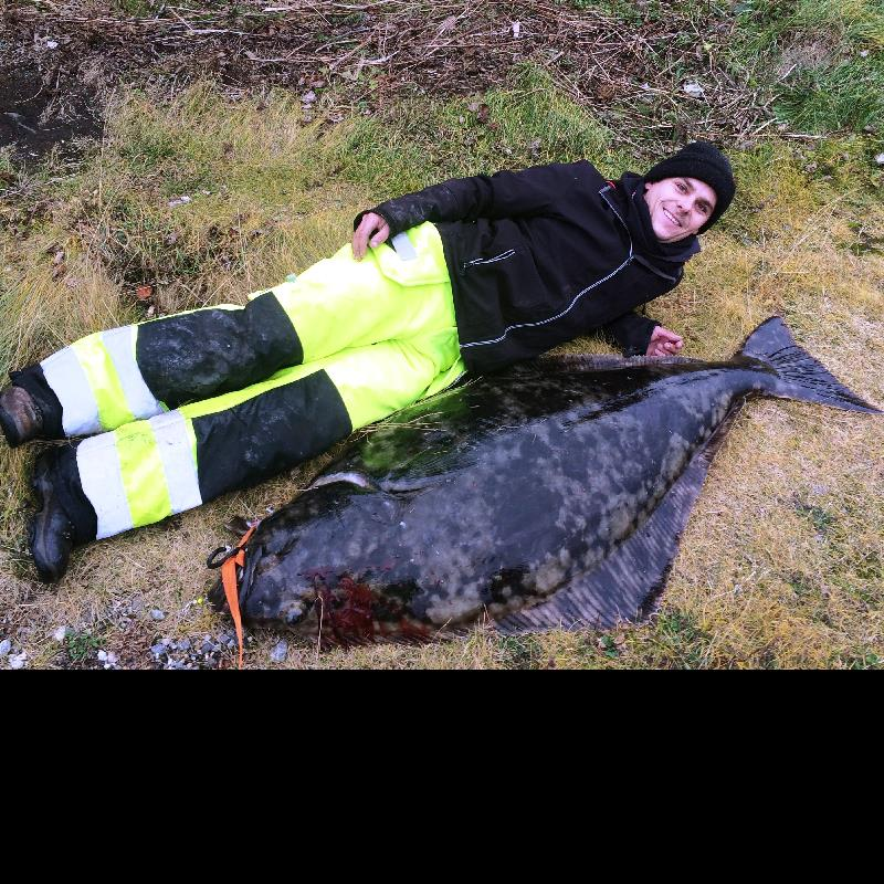 world shore halibut record 2015.jpg