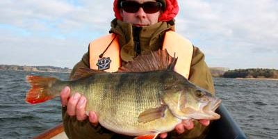 magnificent chew valley perch.jpg