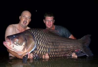 172lb world record siamese carp Wayne Metcalf 2015.jpg