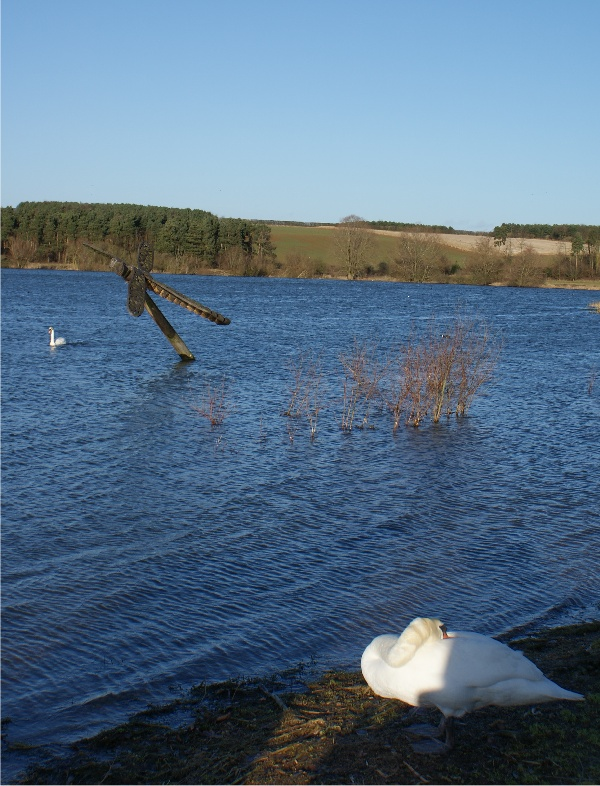 Pitsford Water.jpg