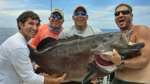 world record black grouper.png