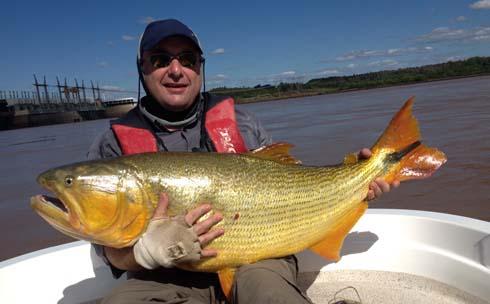 Mark Edwards world record golden dorado 56lb amazon-angler.com