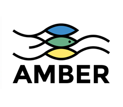 amber.png
