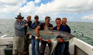 record thresher shark uk.jpg