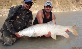 Chris with one of the biggest Indian golden mahseer caught from the Sarayu for years.