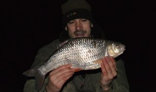 3lb 11oz roach from Highbridge Fisheries in Norfolk