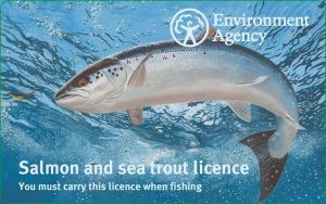 The 2017 salmon fishing rod licence.