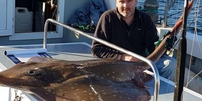 157lb skate from Clew Bay.
