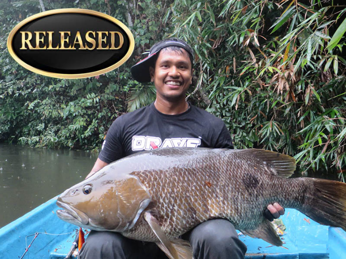 freshwater snapper world record