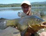A mighty 15.8lb tench to David Aldana from a public water in Spain.