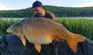 Robi Nagy signs for Bait Tech
