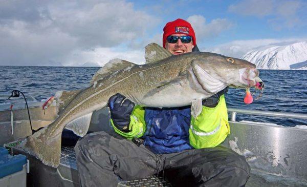 Dave Barham with a big Norwegian cod.