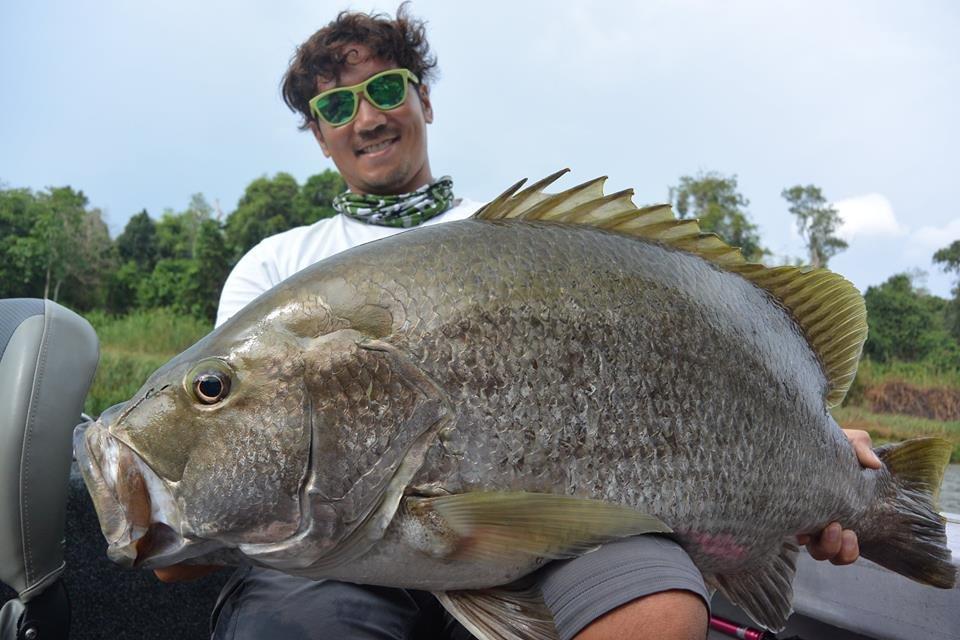 png bass papua new guinea