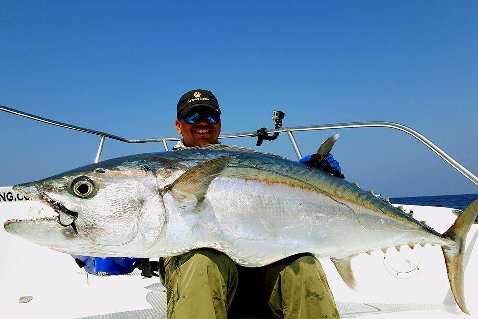 gts and dogtooth tuna andaman islands india