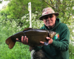 Medway Valley Fisheries 11lb 14oz tench