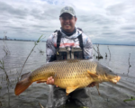 41lb carp caught fly fishing