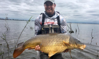 41lb carp caught fly fishing