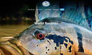 New IGFA website