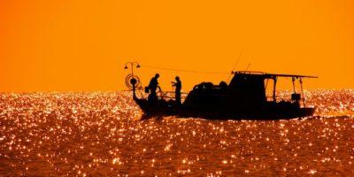 Fishing Pexel