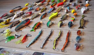 assorted lures